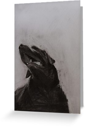 Black and white drawing, Labrador Retriever by melanieroy