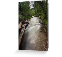 Salt Creek in Bear Canyon Utah Greeting Card