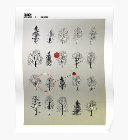 Natura Poster Poster