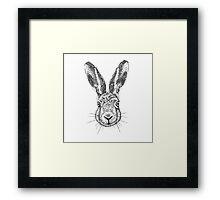 Hare Portrait Ink Drawing Framed Print