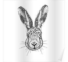 Hare Portrait Ink Drawing Poster