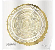 Douglas Fir – Gold Tree Rings Poster