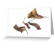Beauty in Demise Greeting Card