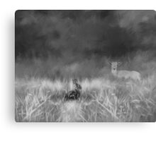 Creatures Great And Small In Black & White Canvas Print