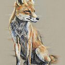 Out-foxed by Paul-M-W
