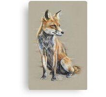 Out-foxed Canvas Print