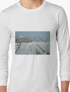 Sea Gulls Perch Long Sleeve T-Shirt