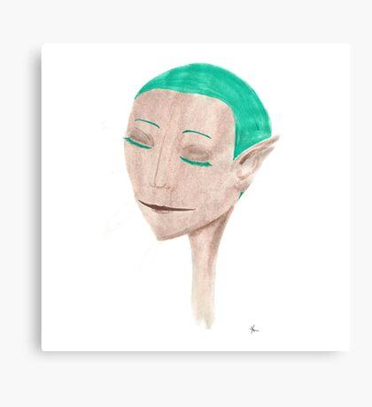 The Elf Canvas Print