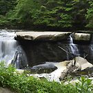 Great Falls of Tinker Creek by Lin Taylor