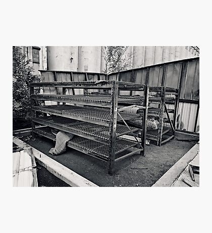 Bare Shelves Photographic Print