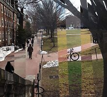 College Green Over Time by Kristin Kelly