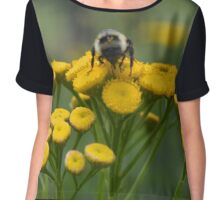 Bumble Bee on Yellow Wildflower Chiffon Top