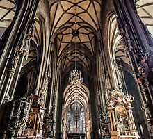 St. Stephen's Cathedral by LaniPix