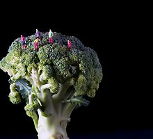 Broccoli People by Alan Organ
