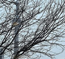 Of trees, towers and workers strong by srosu