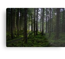 Wooded Glen Metal Print