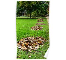 Piles of Leaves Poster