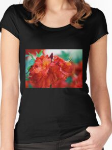 Petal Sphere Women's Fitted Scoop T-Shirt