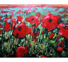 Field of Poppies. Painting by Samuel Durkin Photographic Print