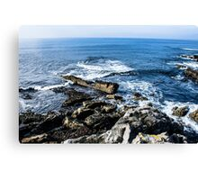 on the cliffs Canvas Print