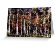 Wind in the Birches Greeting Card