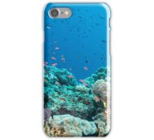 Schoolhouse Reef iPhone Case/Skin
