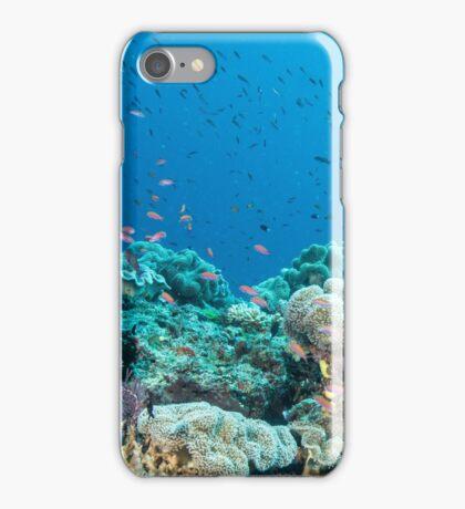 Schoolhouse Reef iPhone Case/Skin