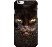 Chocolate cat iPhone Case/Skin