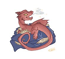 Baby Smaug - commissioned by smauglet Photographic Print