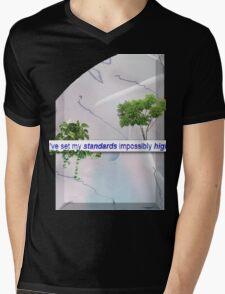 High Standards Mens V-Neck T-Shirt