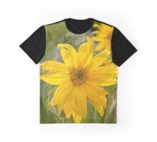 Mule Ear Sunflower Graphic T-Shirt