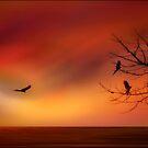 SKY FLIGHT by TOM YORK