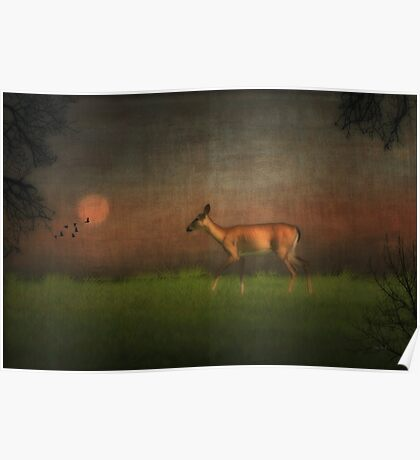Wildlife At Sunset Poster