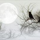 JACKDAWS IN THE MOONLIGHT by TOM YORK