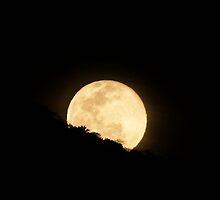 moonrise - salida de la luna by Bernhard Matejka