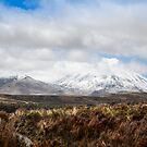 Mount Ruapehu  New-Zealand by 29Breizh33