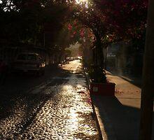 cobblestone street - calle empedrado by Bernhard Matejka
