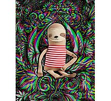 Trippy Sloth no. 3 Photographic Print