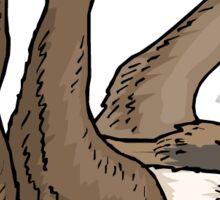 Hanging Sloth Sticker