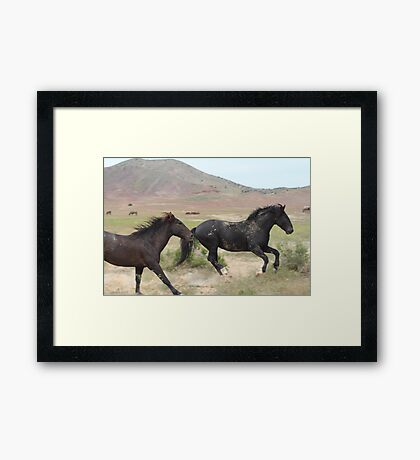 To Be Free Framed Print