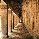 Ta Prohm columns by Nicolas Noyes