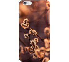 Golden Evening iPhone Case/Skin