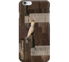 Rooftops and a Bird iPhone Case/Skin