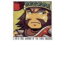 Dynasty Warriors chibi Meng Huo Photographic Print