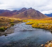 Fall Colour on the Blackstone River by Yukondick