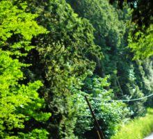 vivid forest road Sticker