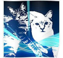 Electric Kittens Poster