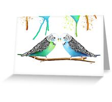 Budgie Love Greeting Card