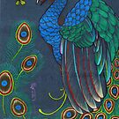 peacock rainbow by resonanteye