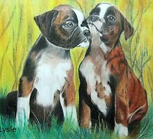 Boxer Buddies by dale216
